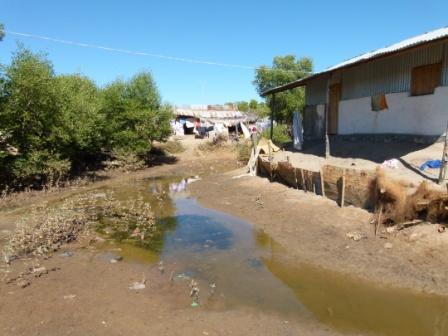 L'abattoir municipal déverse régulièrement le sang des zébus dans le quartier